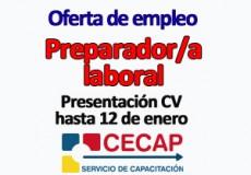 Ofertada una plaza de preparador/a laboral para el Área de Capacitación Laboral y Emprendimiento de CECAP